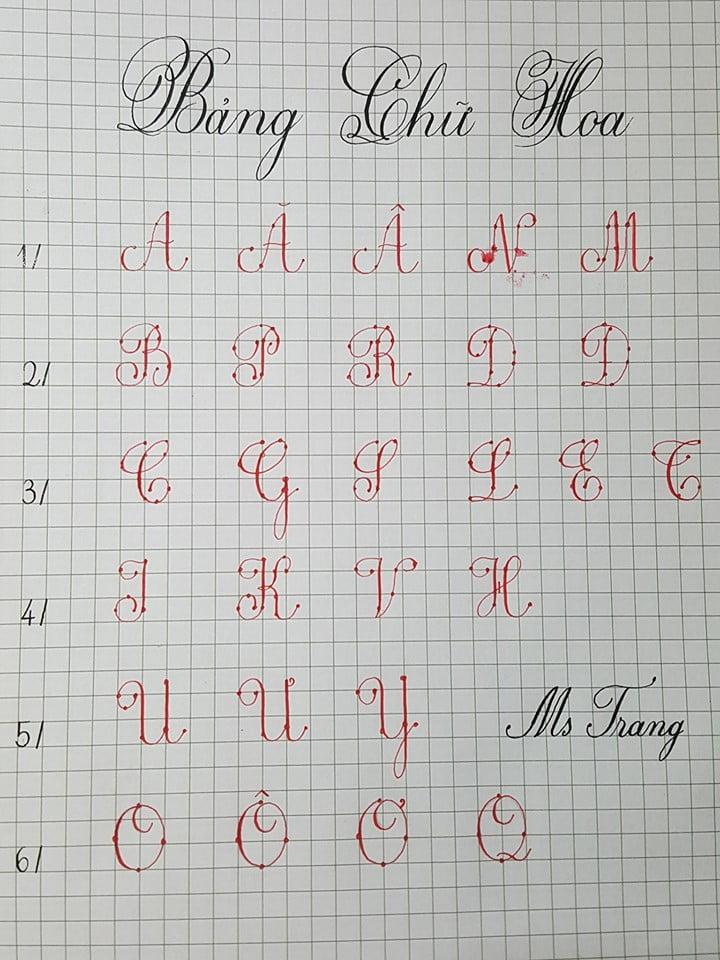 quy trình viết các nét cơ bản