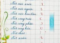nét chữ cơ bản cho bé tập viết